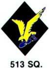 513th Squadron Patch