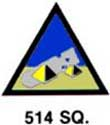 514th Squadron Patch